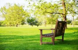 公園のベンチの画像